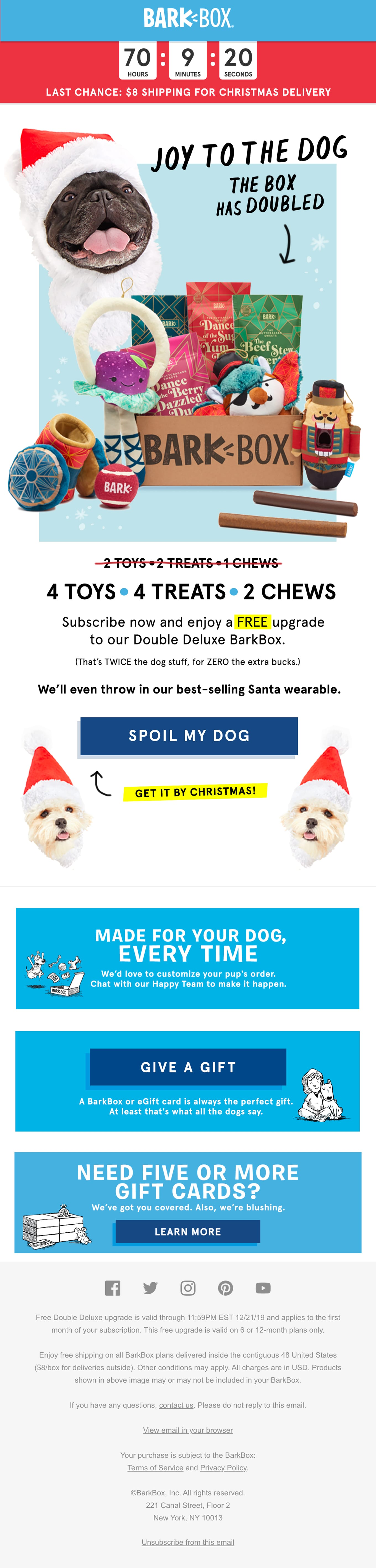 Last chance to get your dog's gift by Xmas Email Screenshot