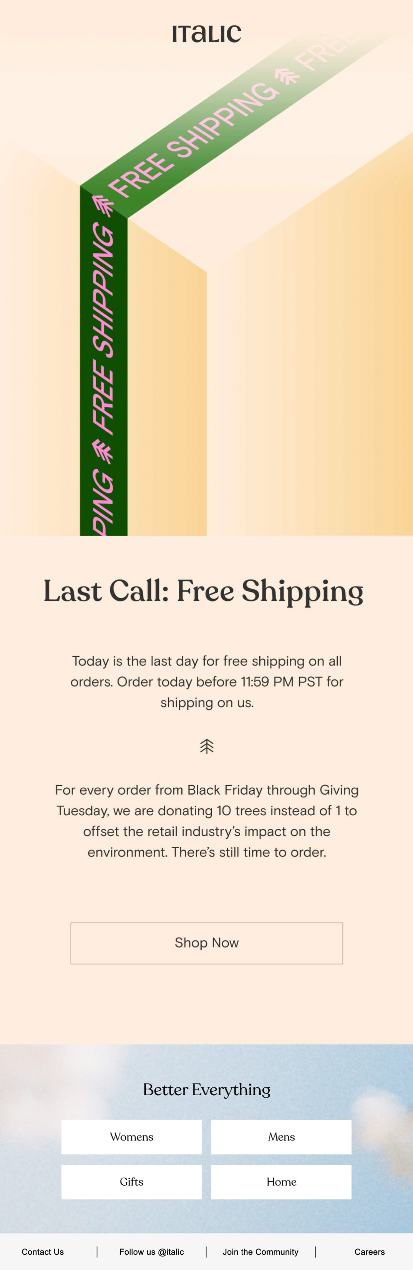 Last chance for free shipping Email Screenshot