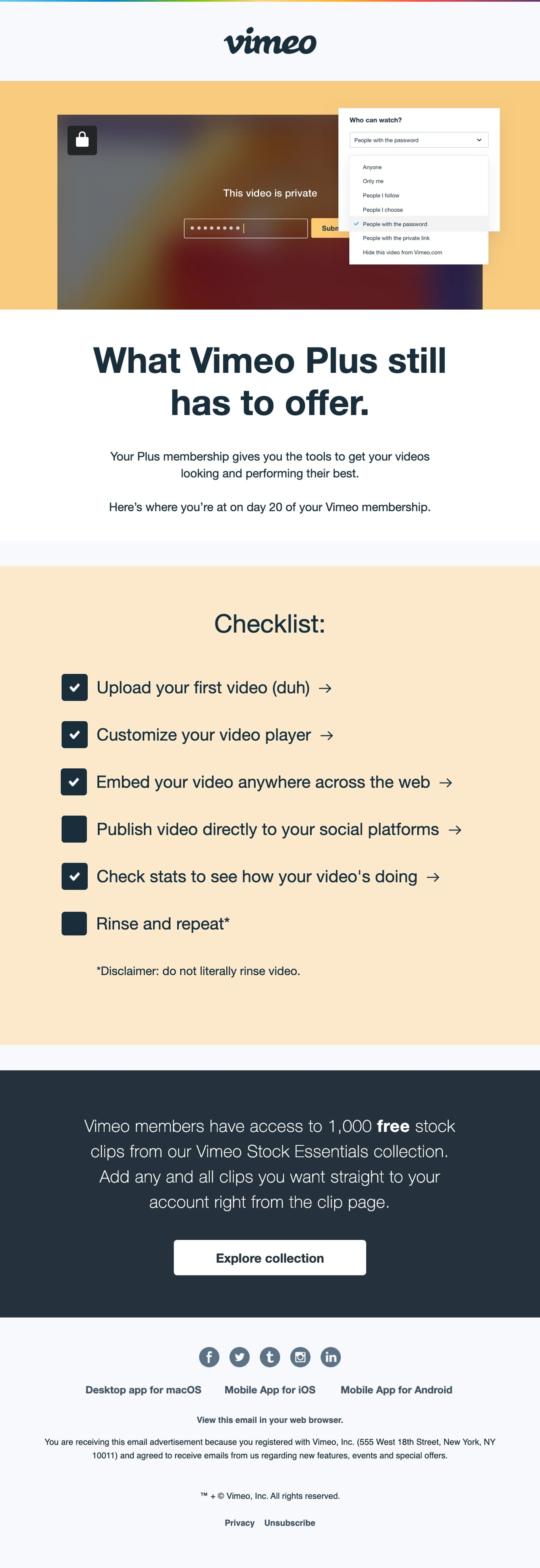 The latest: Your activity report with Vimeo Plus Email Screenshot
